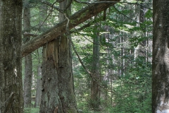 2013_nationalpark_11