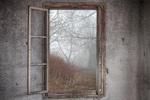 siegerfoto glas